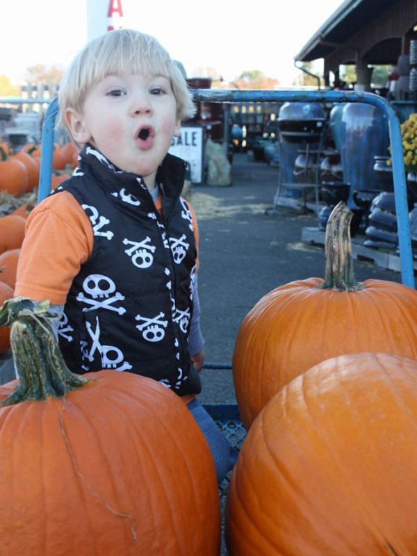 nolan-with-pumpkins